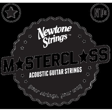 Newtone Master Class Phosphor Bronze Acoustic Strings 11-50
