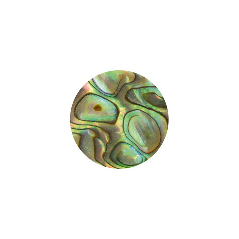 Dot-Inlay-Mother-of-Pearl-Paua 5mm. 20 pack
