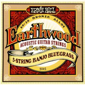 Ernie Ball Earthwood 2063 5 String Banjo Bluegrass
