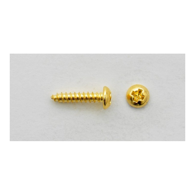 Tuner Mounting Screw