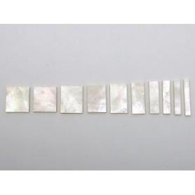 Block Inlays 10 Pearl Set